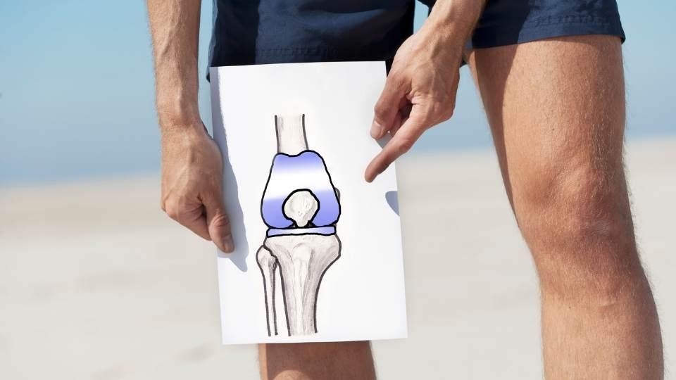 knee replacement rehabilitation